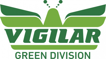 green division vigilar
